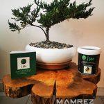 روغن چوب ممرز mamrez wood oil